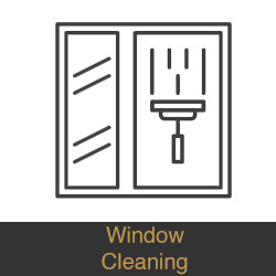 Window washing companies near me